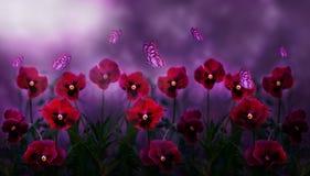 Natürlicher Hintergrund Blumenveilchen im Mondschein und fliegende Schmetterlinge stockfotografie