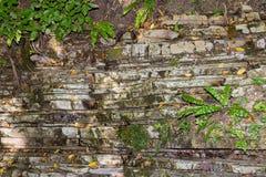 Natürlicher Hintergrund des Felsens wird aus den ungleichen Schichten des Steins umfasst mit Moos und Anlagen verfasst Lizenzfreie Stockbilder
