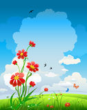 Natürlicher Hintergrund des Sommers mit Blumen Stockfoto