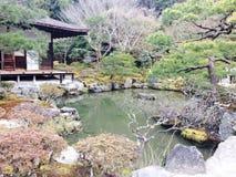 Natürlicher Japan-Baum und -teich Stockfotos