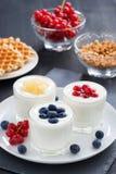 Natürlicher Jogurt der Zusammenstellung mit frischen Beeren und Waffeln Stockfotos