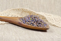 Natürlicher Lavendel in einem hölzernen Löffel Lizenzfreies Stockbild