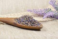 Natürlicher Lavendel in einem hölzernen Löffel Lizenzfreies Stockfoto