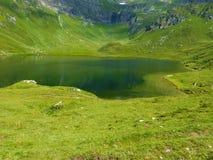 Natürlicher See in den Bergen Lizenzfreie Stockfotografie