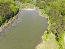 Natürlicher See im Wald Stockbilder