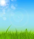 Natürlicher Sunny Background Vector Illustration Stockbilder