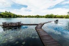 Natürlicher Teich mit bewölktem blauem Himmel lizenzfreie stockfotografie