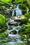 Natürlicher Wasserfall Stockbild