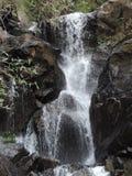 Natürlicher Wasserfall Lizenzfreie Stockfotos