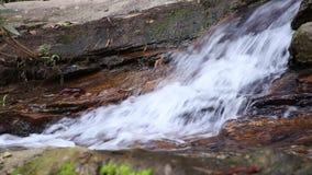 Natürlicher Wasserfall und flüssiges reines Süßwasser mit Blatt und Stein Sunlit Wasserfall stock video