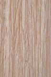 Natürliches Ahornholzholzfurnier-blatt Stockbild