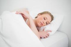 Natürliches attraktives blondes Schlafen im Bett Stockfoto