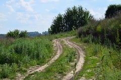Natürliches backroad Erde des Dorfs mit grünem Gras und Bäumen Stockbild