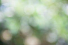 Natürliches Bokeh, unscharfes bokeh Stockbild