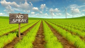 Natürliches eco Landwirtschaftsfeld und -Windkraftanlagen Lizenzfreie Stockbilder