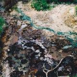 Natürliches Farbe-pallette Lizenzfreies Stockbild
