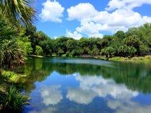 Natürliches Florida Stockfotografie