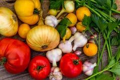 Natürliches Gemüse vom Garten Stockfotografie