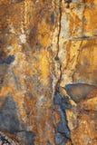 Natürliches Gold und grauer Schiefer Stockbilder