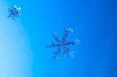Natürliches Kristallmakro der Schneeflocke Stockfotografie