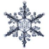 Natürliches Kristallschneeflockenmakro Stockfotografie