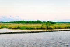 Natürliches Louisiana-Bayou lizenzfreie stockfotografie