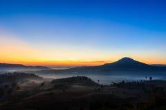 Natürliches Morgenlicht Stockbilder