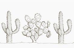 Natürliches nahtloses Muster mit Hand gezeichnetem Kaktus Lizenzfreie Stockbilder