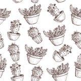 Natürliches nahtloses Muster mit Hand gezeichnetem Kaktus Stockbild