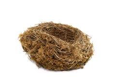 Natürliches Nest Lizenzfreie Stockbilder
