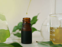Natürliches oder organisches Öl Lizenzfreies Stockbild