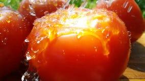 Natürliches organisches der Tomate auf hölzerner strömender Energiesommer-Wasserzeitlupe stock video