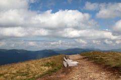 Natürliches Panorama mit weißen Wolken auf dem Himmel Stockfotos