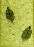 Natürliches Papier mit Blättern, (hight Auflösung) Stockfoto