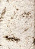Natürliches Papier mit Blättern, (hight Auflösung) Stockfotografie