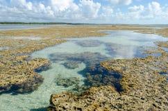 Natürliches Pool in Brasilien Lizenzfreies Stockbild