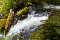 Natürliches Quellenwasser stockbild