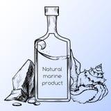 Natürliches Seeprodukt Stockfotos