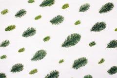 Natürliches Weihnachtsmuster gemacht von den Tannenzweigen Stockbild