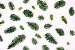 Natürliches Weihnachtsmuster gemacht von den Tannenzweigen Stockfotos