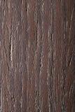 Natürliches Zebrano Furnier-Blatt Stockfoto