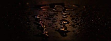 Nat asfalt, nachtsc?ne van een lege straat met wat bezinning in het water stock afbeeldingen