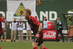 Nat Borchers Stock Photography