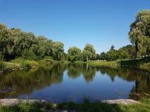 Nat land in het park royalty-vrije stock fotografie