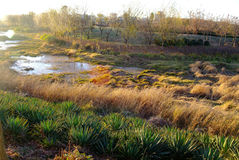 Nat land in zonsondergang stock afbeelding