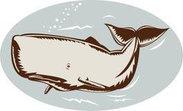 Natação da baleia Fotos de Stock