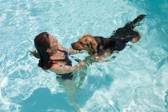 Natação da mulher com cão Imagem de Stock