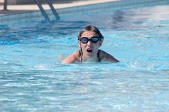 natação da mulher na piscina Foto de Stock