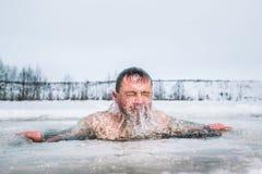 Natação do furo do gelo fotos de stock