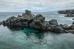 Natação do pai e da filha na piscina natural Charco De La Laja, no norte de Tenerife Imagens de Stock